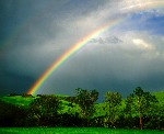 Network Marketing (MLM) Rainbows Vanish, WHY?